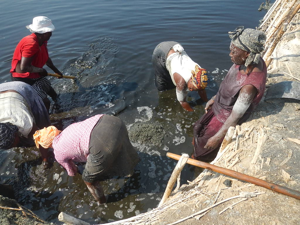 Women Salt Miners on Lake Katwe