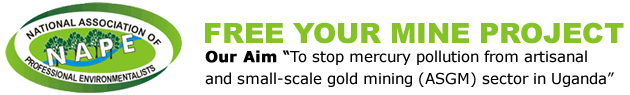 FREE YOUR MINE PROJECT - Logo